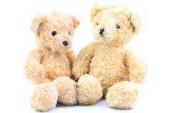二棕熊 库存图片