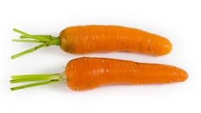 二棵红萝卜 库存照片