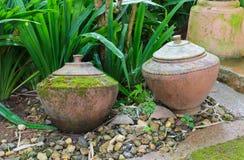 老陶器在庭院里 免版税库存照片