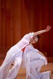 二重奏舞蹈 库存图片
