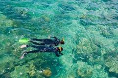 Snorkelers,大堡礁,澳洲 免版税库存照片
