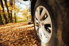 于路适合的轮胎 库存照片