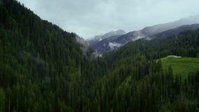 云彩与森林的山上面空中射击  股票视频