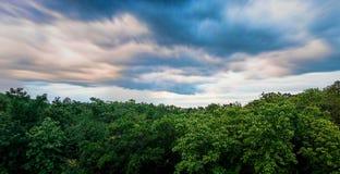 云彩和树 免版税库存照片