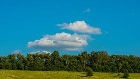 云彩和草甸有森林的 免版税库存图片