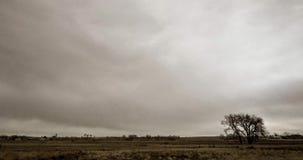 云彩和闪电在科罗拉多东部 股票录像