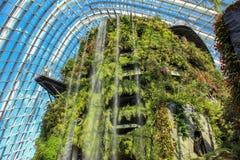 云彩森林做在滨海湾公园 免版税库存图片