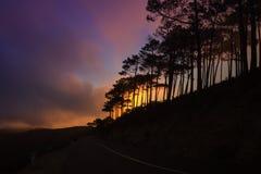 云彩森林公路 库存图片