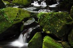 云彩森林瀑布 图库摄影