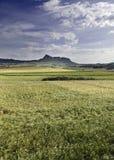 云彩横向山麦子 免版税图库摄影
