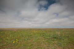 云彩的运动在春天在C的干草原零件 免版税库存照片
