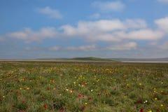 云彩的运动在春天在C的干草原零件 图库摄影