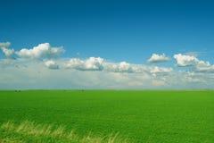 云彩调遣绿色麦子白色 免版税库存图片