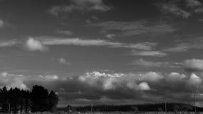 云彩Hyperlapse在乡下 从右到左移动在黑暗的树的积云和触毛 股票视频