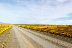 云彩Tankwa南部非洲的干旱台地高原路  库存照片