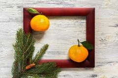 云杉和桔子小树枝与一片叶子在一张木桌上在一个棕色框架 背景新年度 库存图片