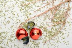 云杉和残破的球干燥分支  库存图片