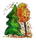 云杉和秋天树与落的叶子 免版税库存照片