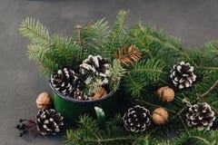 从云杉的分支的冬天构成, pinecone,在葡萄酒的坚果在黑暗的背景抢劫 免版税库存照片