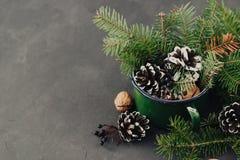 从云杉的分支的冬天构成, pinecone,在葡萄酒的坚果在黑暗的背景抢劫 免版税图库摄影