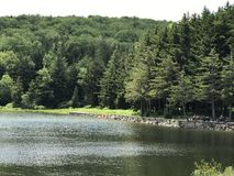 云杉的Knob湖在西维吉尼亚 免版税库存图片