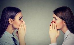 互相耳语两名的妇女闲话秘密 免版税库存图片