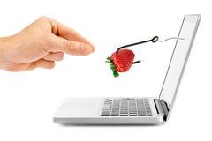 互联网欺骗概念 有诱饵的勾子通过膝上型计算机屏幕 免版税图库摄影
