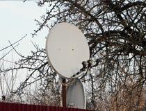 互联网通信和在房子的屋顶安装的电视卫星盘在绿色树背景 免版税库存照片