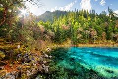 五上色了水池用在山中的天蓝色的水 免版税库存照片