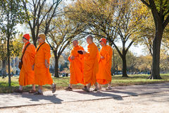 五个和尚步行在华盛顿特区公园 库存图片