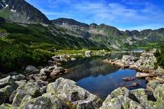 五个湖谷的风景在Tatras山的 免版税库存照片