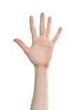 五个编号掌上型计算机妇女 免版税图库摄影