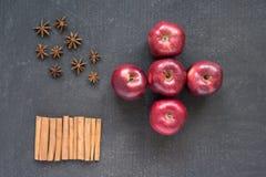 五个苹果、八角和桂香 库存图片