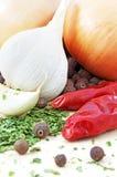 五个香料冠上蔬菜 免版税库存图片