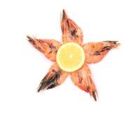 五只新鲜的煮沸的虾。 库存图片