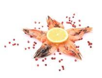 五只新鲜的煮沸的虾。 免版税库存照片