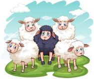 五只绵羊 免版税库存图片