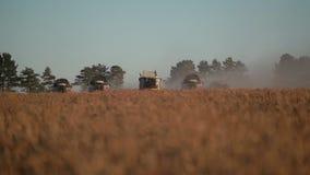五在金黄领域的现代联合收获麦子秋天,正面图 股票录像