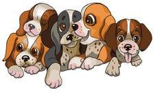 五愉快的小犬座 皇族释放例证