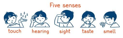 五感觉单色象集合 男孩例证 库存例证