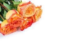 五朵玫瑰和拷贝空间花束  免版税图库摄影
