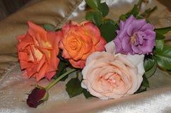 五朵玫瑰花束红色,橙色,淡紫色和桃红色金黄颜色尿布表面上  库存照片