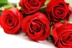 五朵玫瑰 库存照片