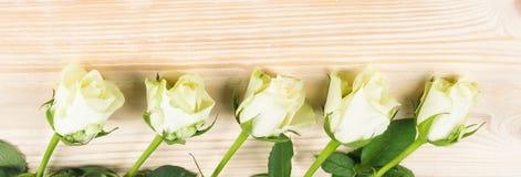 五朵美丽的白玫瑰在木背景说谎 库存照片