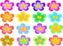 五朵花混合更多点 免版税库存照片