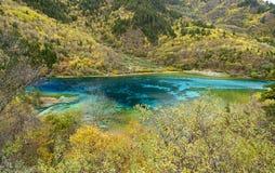 五朵花湖在九寨沟 免版税库存图片