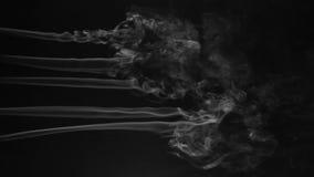五条线在黑背景的白色烟 美丽烟线 股票录像
