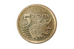 五波兰钱币 波兰兹罗提 波兰的货币 硬币的宏观照片 波兰描述五擦亮剂波兰钱币硬币 免版税库存图片
