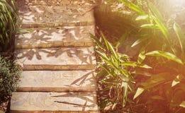 五浅步石台阶在庭院里 库存图片