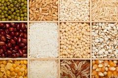 五谷和豆的不同的类型 库存照片